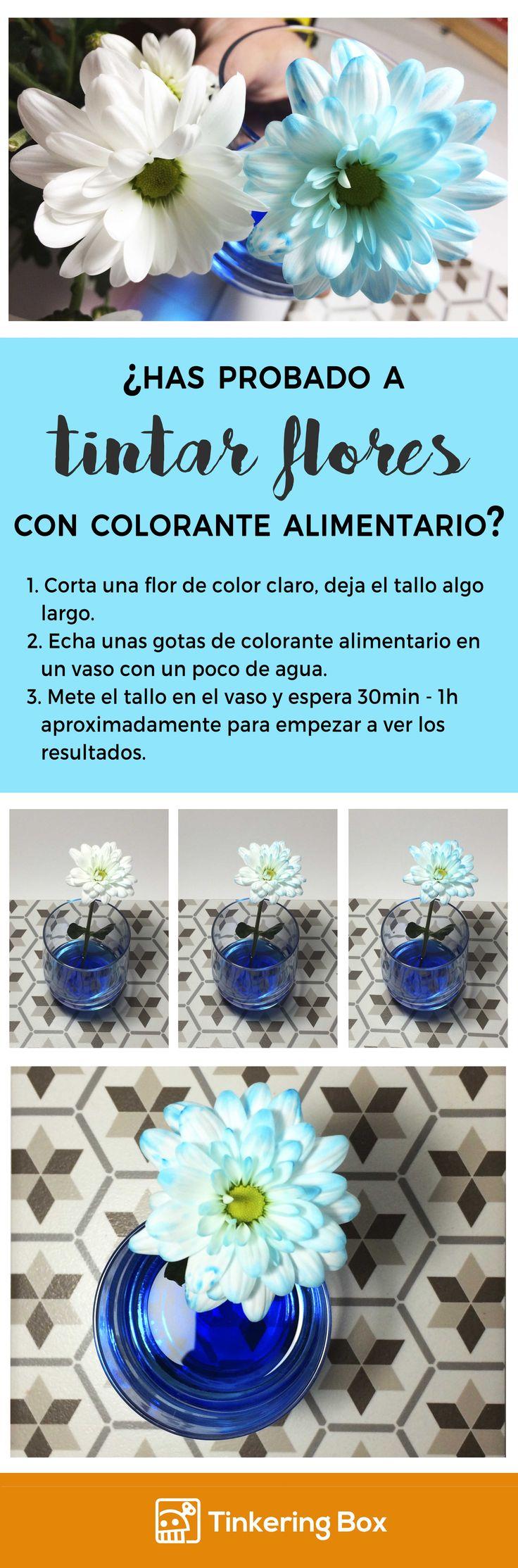 Usa colorante alimentario de distintos colores para tintar flores. Síguenos y descubre más experimentos y juegos. Más cosas en  https://twitter.com/TinkeringB y https://www.instagram.com/tinkeringbox/