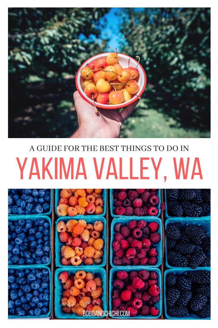 Amazing Things To Do In Yakima Valley Washington Yakima Valley Things To Do Yakima