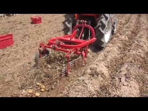potato digger machine in Malta - YouTube