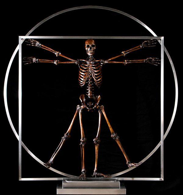 bronze skeleton bone sculptures