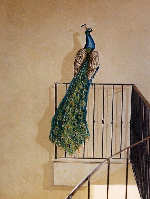 Peacock. www.giorgiograesanclub.com - LOVE shadow!  -  #Peacock Insired - #Wall…