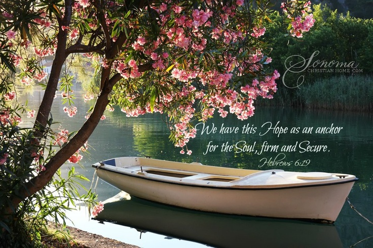 Hebrews 6:19 ~ We have this hope as an anchor for the soul, firm and secure...