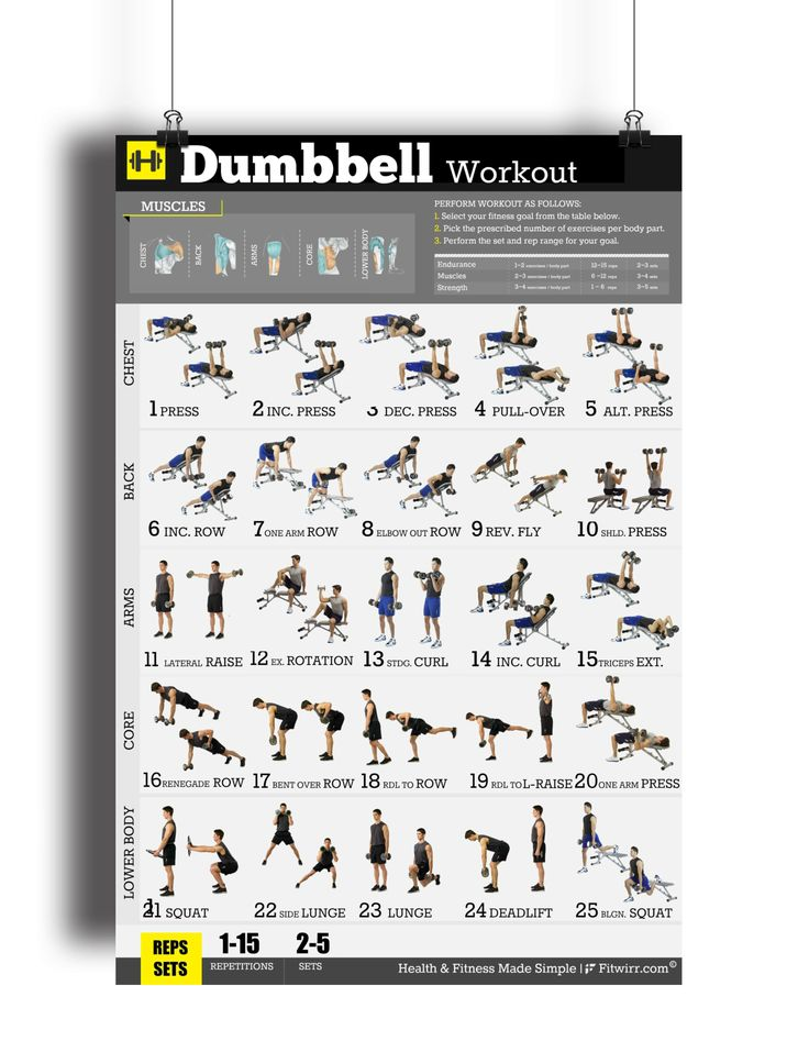 Dumbbell workout exercise poster for men to build strength, muscles and reducing body fat. Our workout poster will show you the absolute best dumbbell exercises to build the body you want. Increase yo