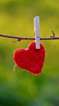 valentines day 6s 2014