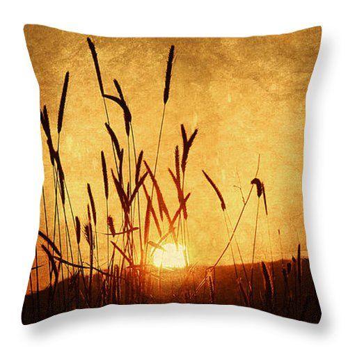 Cuscini - Spighe al tramonto tiro cuscino da Orazio Puccio