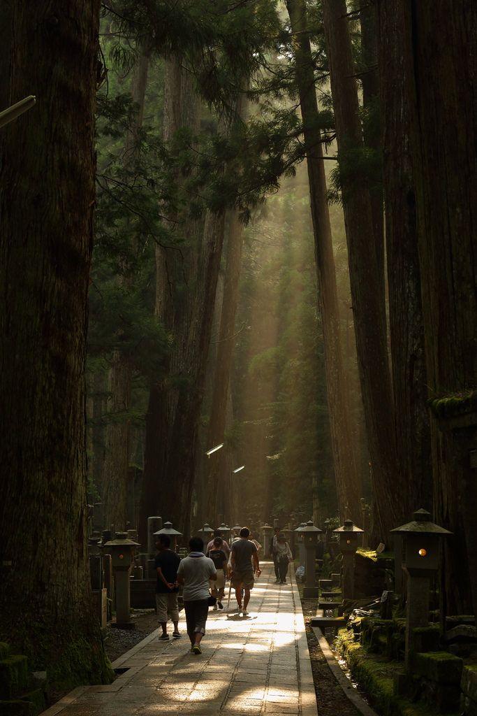 高野山奥の院 - tsugu