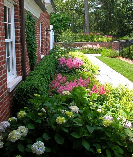 best 25+ foundation planting ideas on pinterest | front flower