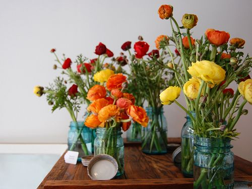 ranunculus for fallWild Flower, Ball Jars, Beautiful Flower, Blue Mason Jars, Orange Flower, Flower Arrangements, Flower Ideas, Wedding Flower, Bright Colors