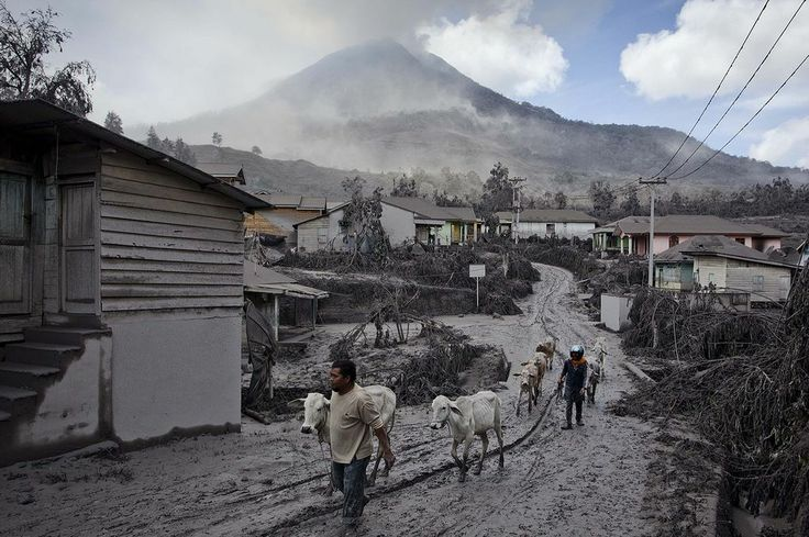 Pictured: Villagers flee as volcano erupts again covering everything in ash