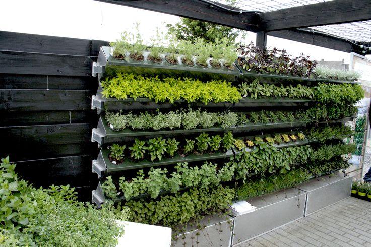WaterWick Green Wall