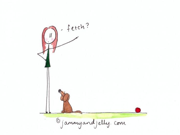 ...train the dog
