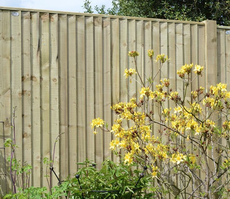 Closeboard Pressure Treated Green Fence Panel From Grange - GardenSite.co.uk