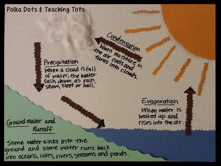 28 best water cycle project images on pinterest water cycle craft the water cycle craftdiagram ccuart Choice Image