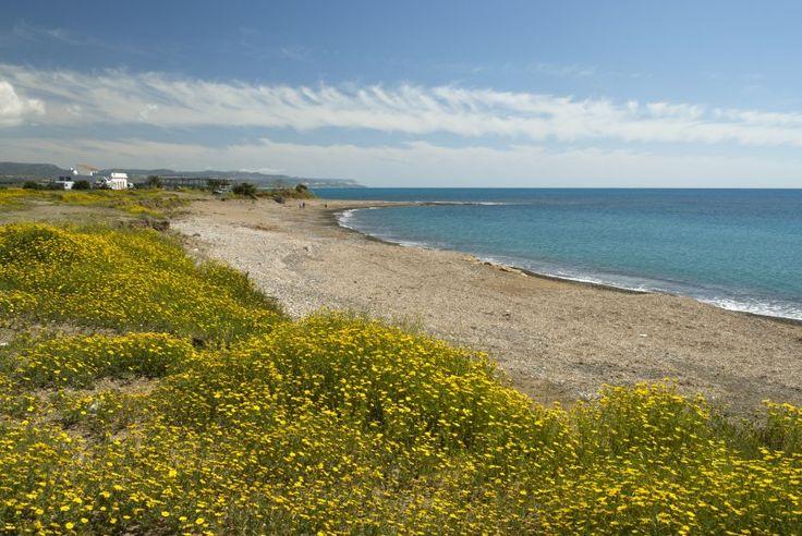 Τα πιο καθαρά νερά για μπάνιο στην Ευρώπη βρίσκονται και εφέτος στις ακτές της Κύπρου.Να το προσέξουν, μην τα χαλάσουν με την εκμετάλλευση των κοιτασμάτων πετρελαίου και υδρογονανθράκων.