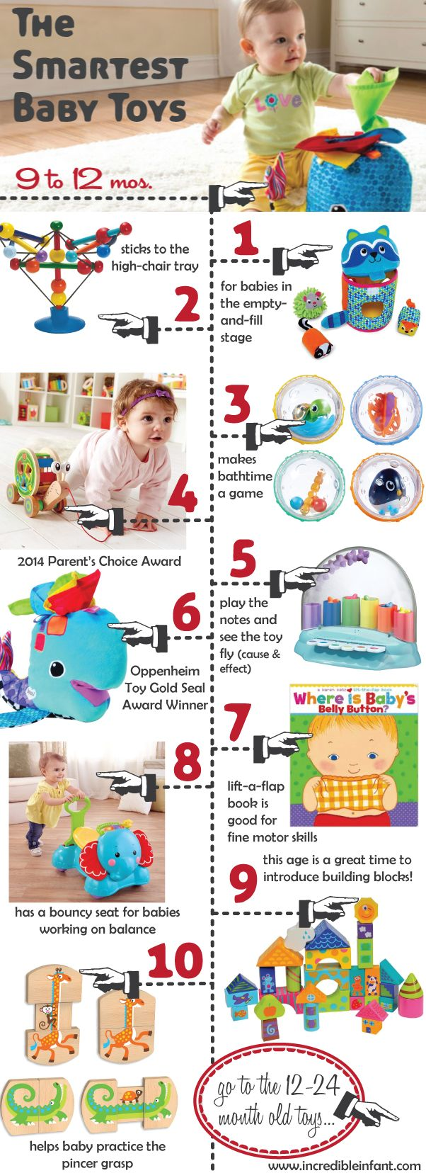 The+Smartest+Baby+Toys+for+Ages+9-12+Months+http://www.incredibleinfant.com