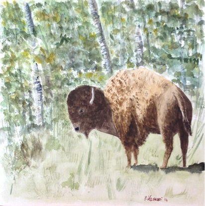 Wood Buffalo - watercolour cm 30x30