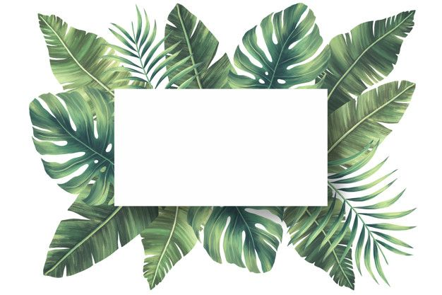 Download Lovely Natural Frame With Tropical Leaves For Free In