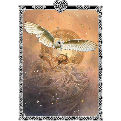 Arianrhod Celtic Moon Goddess  Arianrhod (ah-ree-AHN-rhohd), Arian meaning 'silver', and Rhod meaning 'wheel' or 'disc'. Celtic Moon-Mother Goddess. Called the Silver Wheel that Descends into the Sea. Daughter of the Mother Goddess Don and her consort Beli. She is ruler of Caer Sidi, a magical realm in the north. She was worshiped as priestess of the moon. The benevolent silver sky-lady came down from her pale white chariot in the heavens to watch more closely over the tides she ruled.