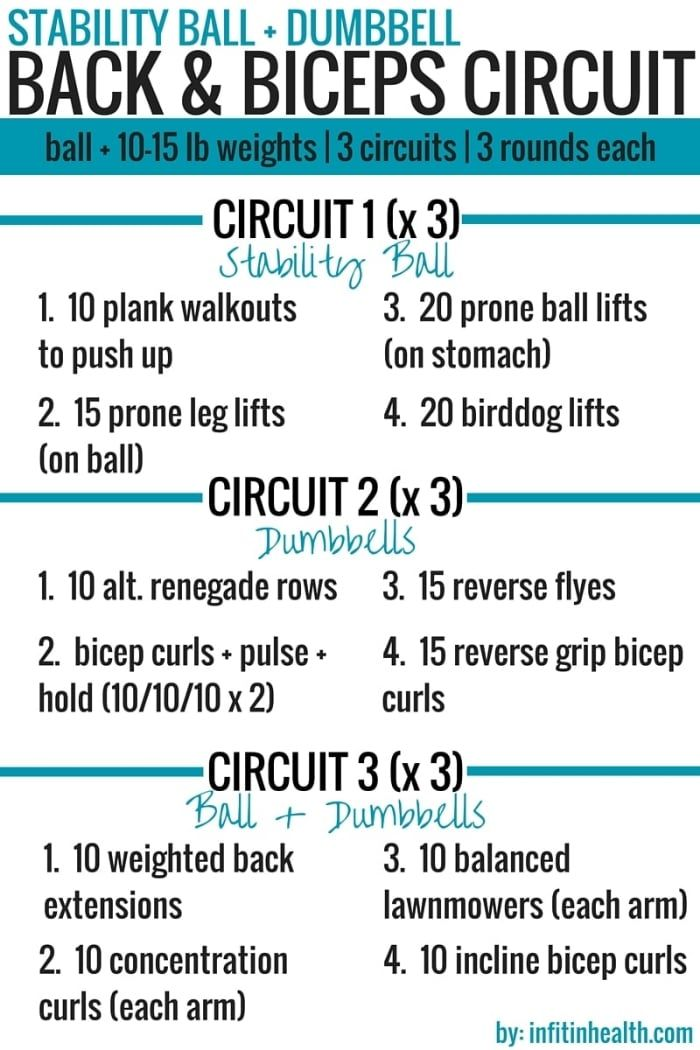 Stability Ball + Dumbbell Back & Biceps Circuit Workout ...