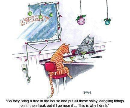 «Alors ils entrent un arbre dans la maison et y accrochent toutes sortes de choses brillantes qui pendouillent, et quand j'essaye de m'en approcher... c'est la panique!  Alors c'est pour ça que je bois.»  Dur dur la vie de minou, non?