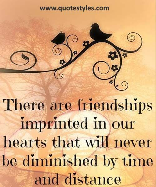 Will never be diminished- Friendship Quotes