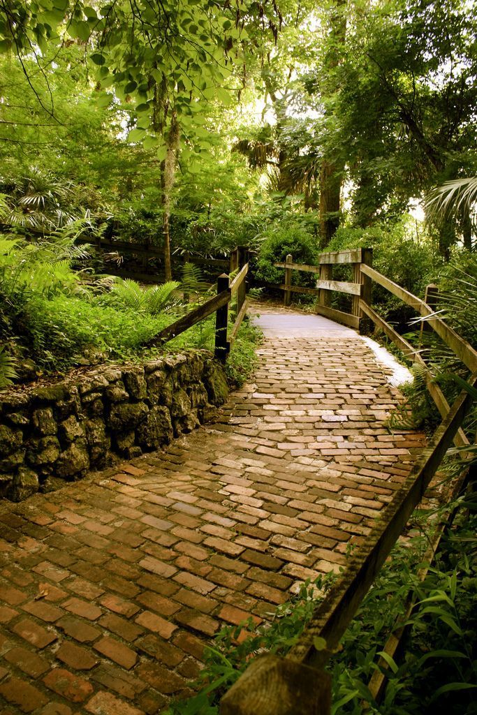 This One Easy Hike In Florida Will Lead You Someplace Unforgettable The trail at Rainbow Springs State Park in Dunnellon