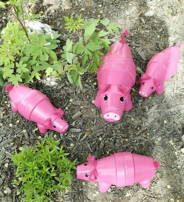 I made from Terra cotta clay pot's, my little pig's finally have faces, and enjoying the outdoors.