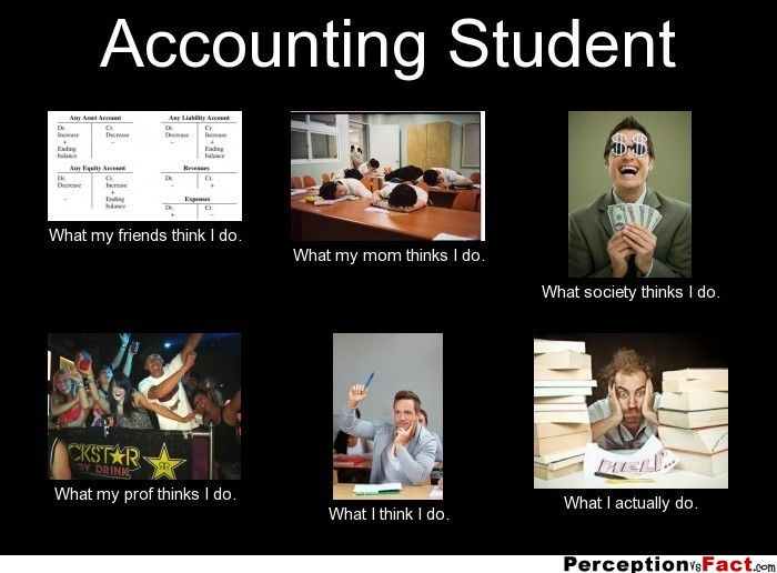 Funny Cat Accounting