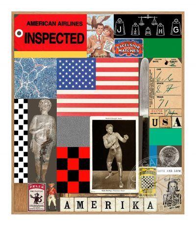 USA Series- Boxer by Sir Peter Blake