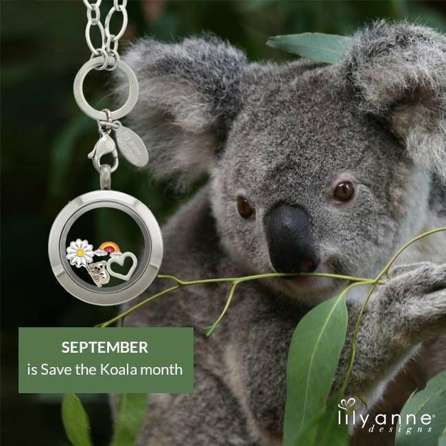 September is Save the Koala month. Be sure to wear the koala charm in your locket during September! #LilyAnneDesigns #SaveTheKoala #AustralianWildlife