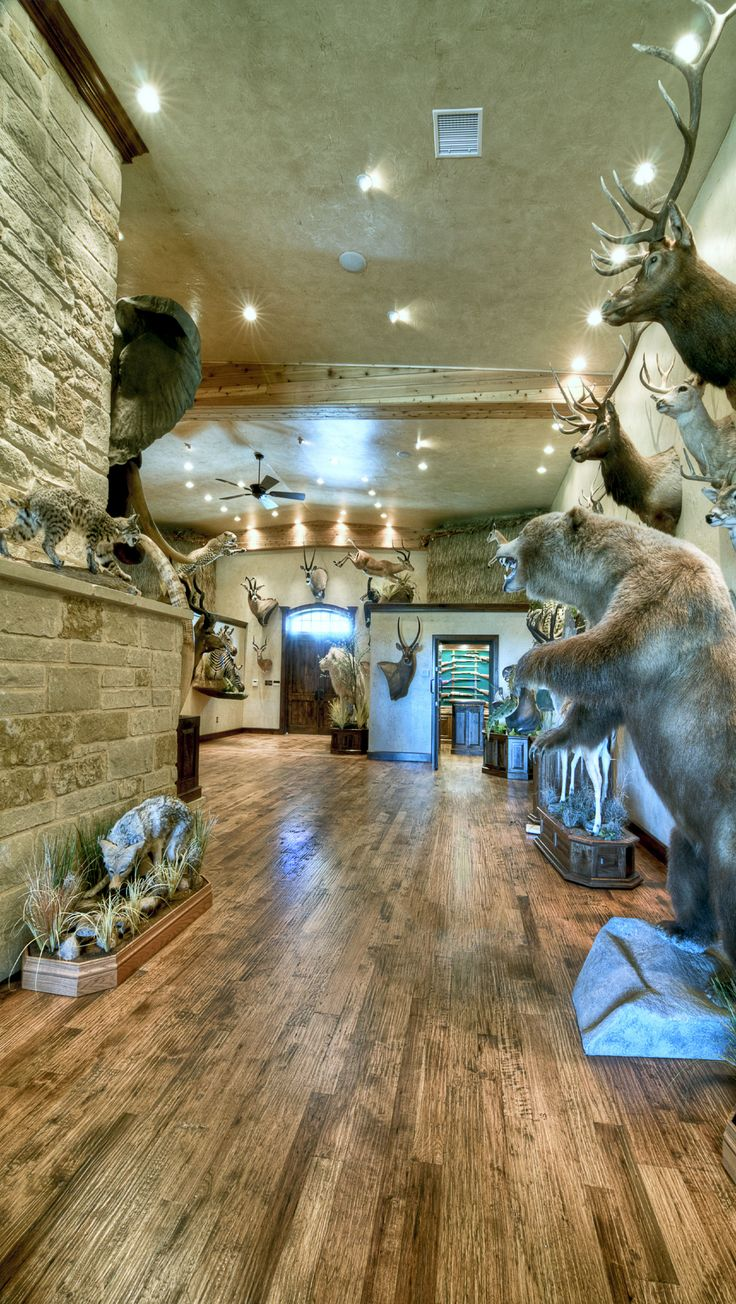 49 Best Images About Trophy Room On Pinterest European
