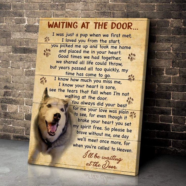 Waiting At The Door Personalized Dog Photo Wall Art Poster Canvas In 2021 Photo Wall Art Dog Photos Canvas Wall Art