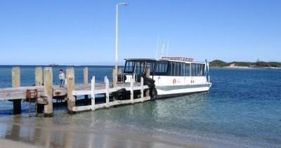 Penguin Island - Rockingham WA