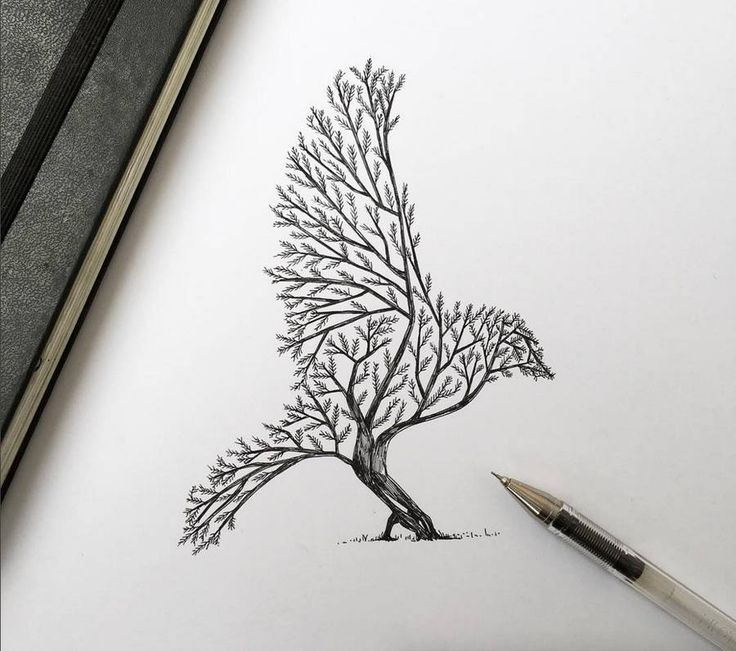 Best 25 bird sketch ideas on pinterest sketches of for Ink drawings easy