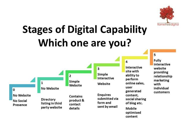 The Flame Tree Digital AUDIT will examine where your business is currently in terms of digital capability. These findings will contribute towards our recommended digital strategy for your business.