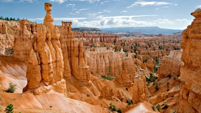 """The tall, sculptural-looking """"hoodoos"""" of Bryce Canyon have made the site famous. The geological structures are orange, white and red and ma..."""