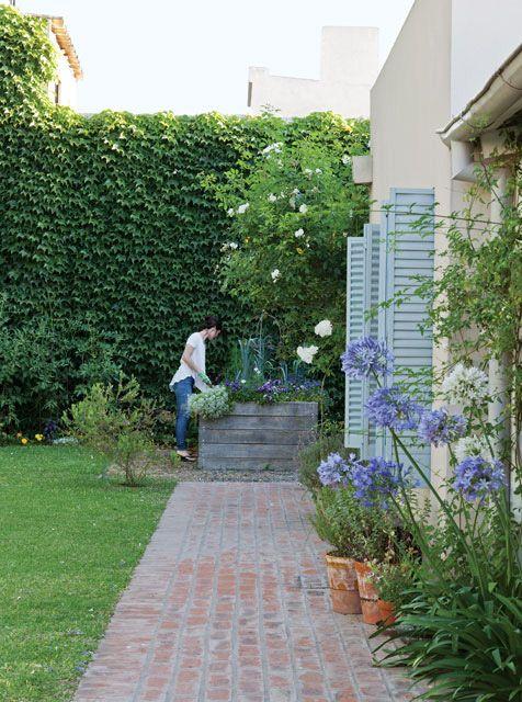 Jardín de una casa remodelada en la provincia de Buenos Aires. Macetas de barro con menta y romero, cantero de madera y hiedra cubriendo toda una pared.