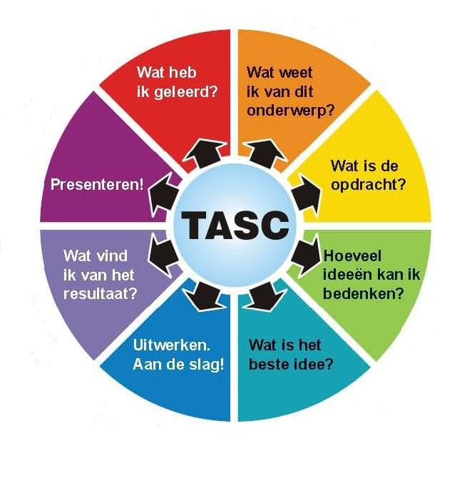 tasc model nederlands - Google zoeken