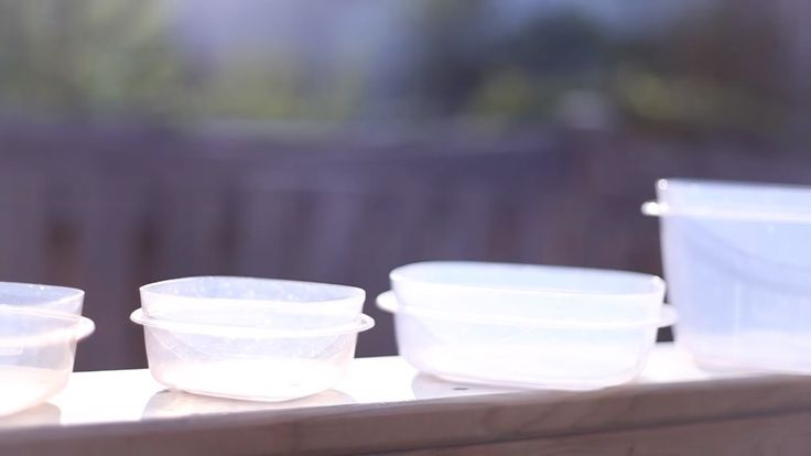 Sommige voedselvlekken en -geurtjes lijken nooit meer uit plastic potjes te gaan, hoe hard je ook schrobt. Gelukkiglos je dat met deze trucs makkelijk op! Vlekken Doe een flink scheut bicarbonaat in het potje. Voeg er een klein beetje warm water aan toe. Schrob met een harde (oude) tandenborstel. Geurtjes Ook om geurtjes te verwijderen … Continued