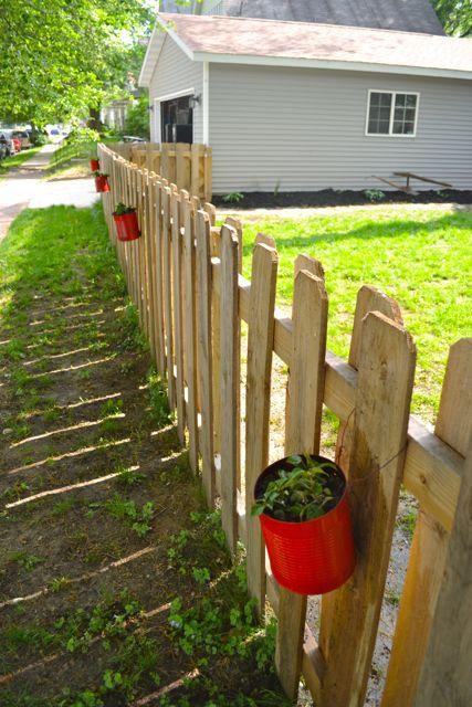 Making fence planters from cans - NewlyWoodwards Yes.