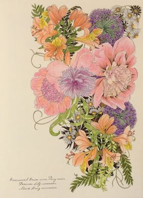 Floribunda A Flower Colouring Book You Can Read My Review Here