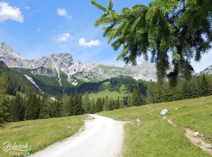 Oostenrijks bergleven