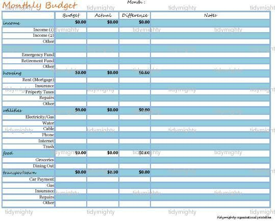 monthly budget planner    financial organizer customizable