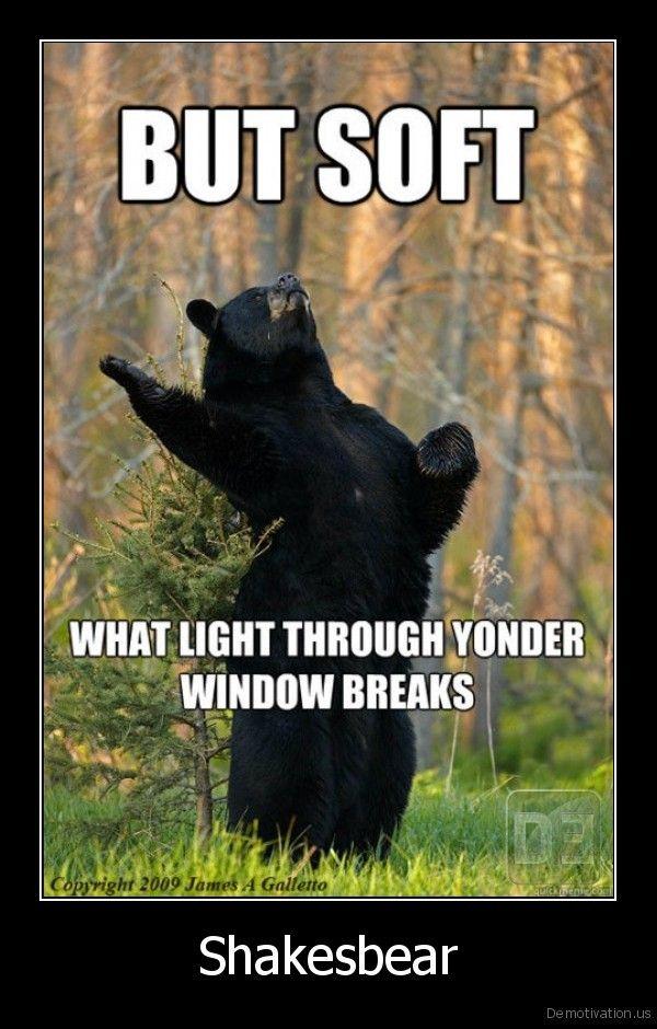 hahahahLaugh, Shakesbear, Funny Pictures, Bears, Funny Stuff, Humor, Things, Giggles, Animal