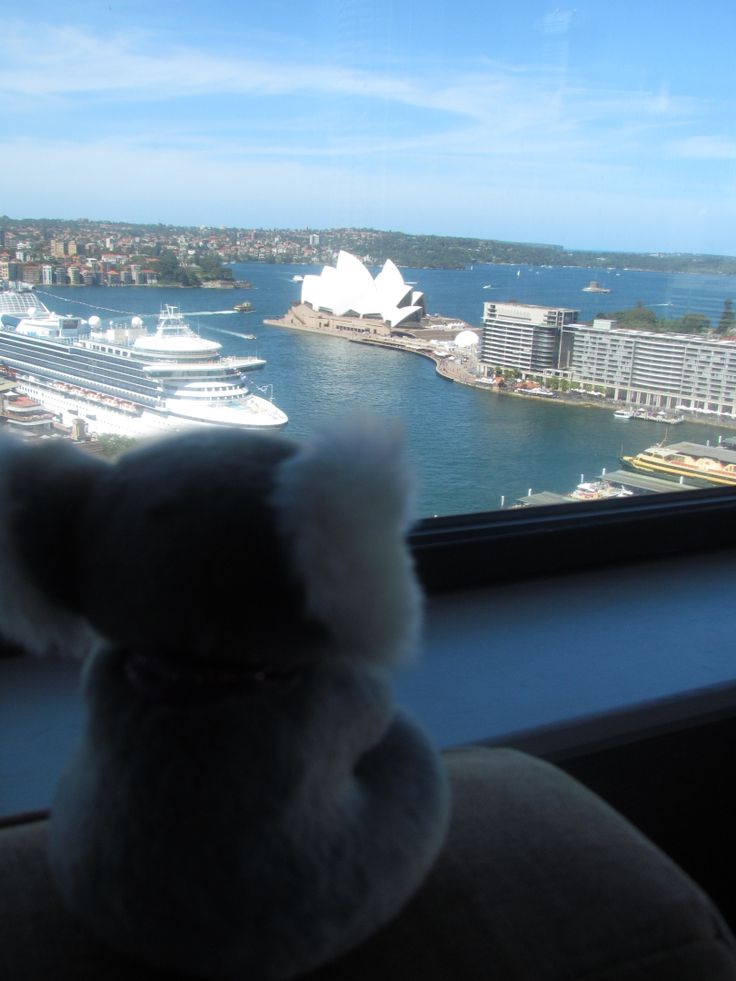 The view from our room at The Four Seasons Hotel, Sydney
