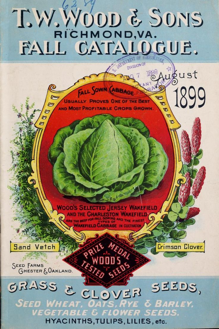 garden seed catalogs. TW Wood \u0026 Sons - Wood\u0027s Garden Farm Guide : High Grade Seeds For 1898 This Is A Beautiful Catalogue With Nice Colors In The Illustrations! Seed Catalogs