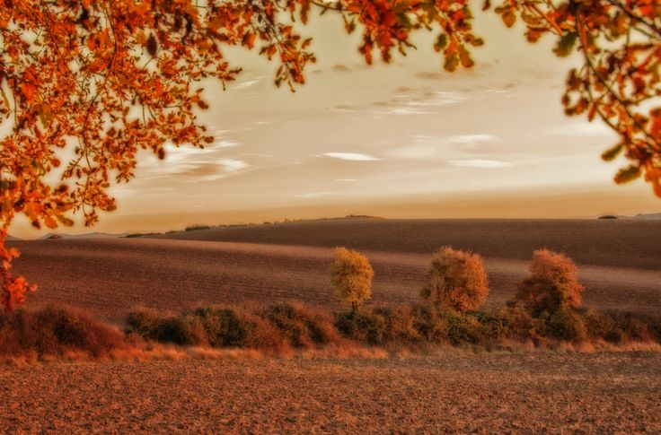 Sunset in autumn by Asier Montoia on 500px