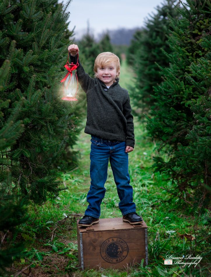 Christmas Tree Farm Holiday Portraits Freehold Nj Newborn Baby Children Photographer In 2020 Christmas Tree Farm Farm Holidays Holiday Portraits
