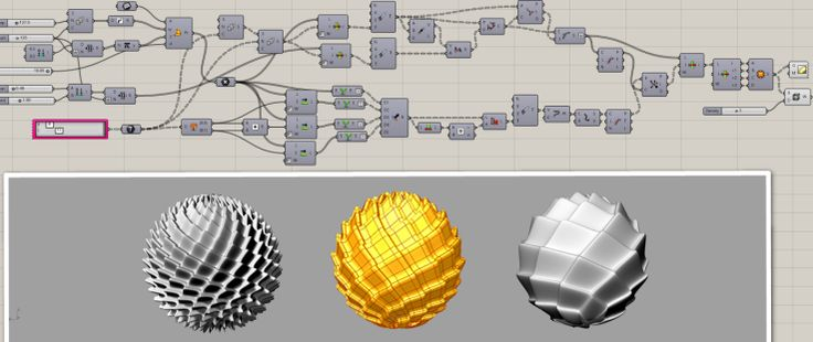 Phyllotaxis with NURBS