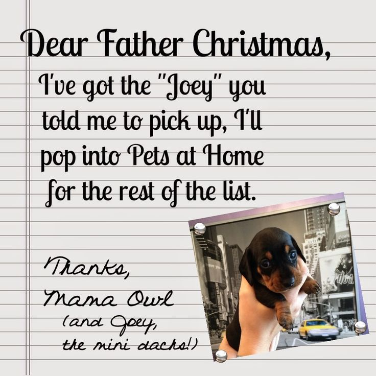 Mama OWL: Dear Father Christmas, from Florence